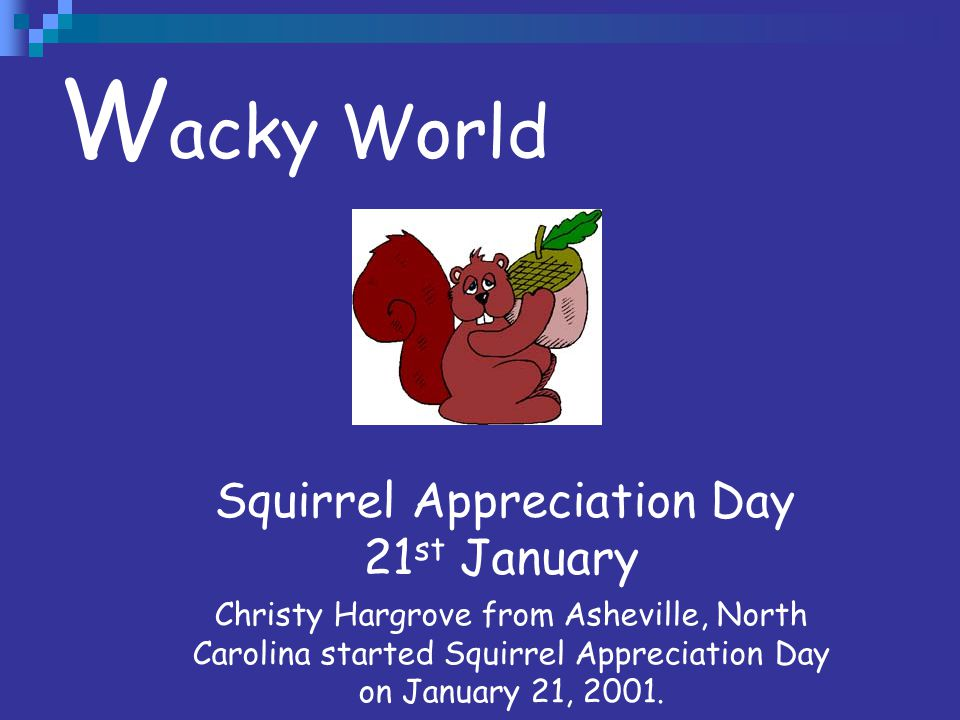 W acky World Squirrel Appreciation Day 21 st January Christy Hargrove from Asheville, North Carolina started Squirrel Appreciation Day on January 21,