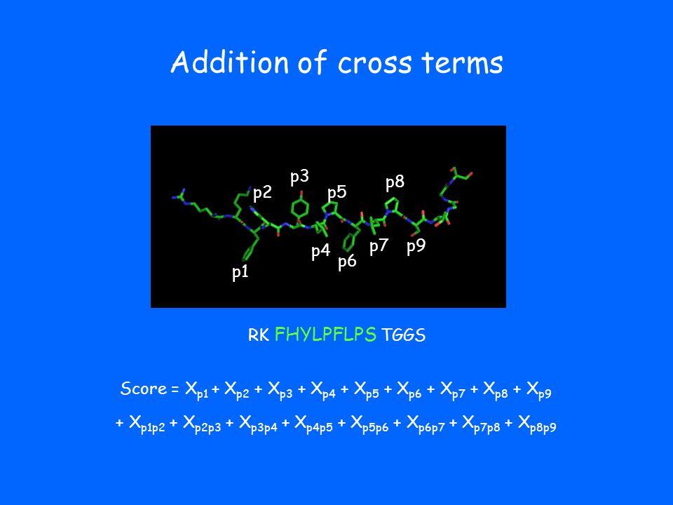 Addition of cross terms p1 p2 p3 p4 p5 p6 p7 p8 p9 RK FHYLPFLPS TGGS Score = X p1 + X p2 + X p3 + X p4 + X p5 + X p6 + X p7 + X p8 + X p9 + X p1p2 + X p2p3 + X p3p4 + X p4p5 + X p5p6 + X p6p7 + X p7p8 + X p8p9