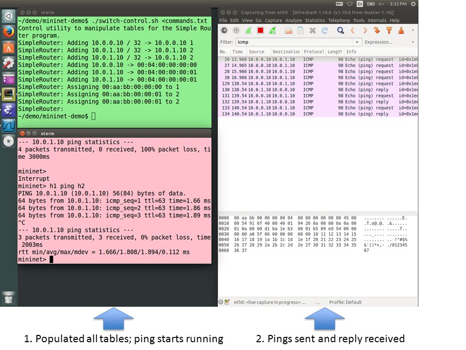 1. Populated all tables; ping starts running2. Pings sent and reply received