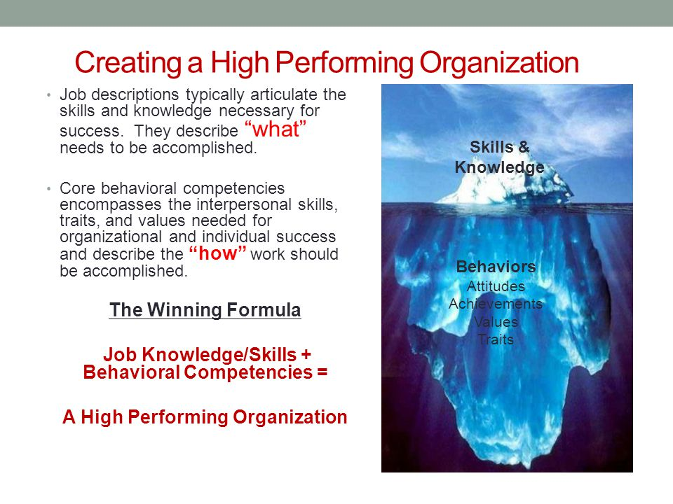 Defining Competencies 101 Competencies are generally defined as a skill, knowledge, or behavior that is observable and allows an employee to successfully perform his or her job.