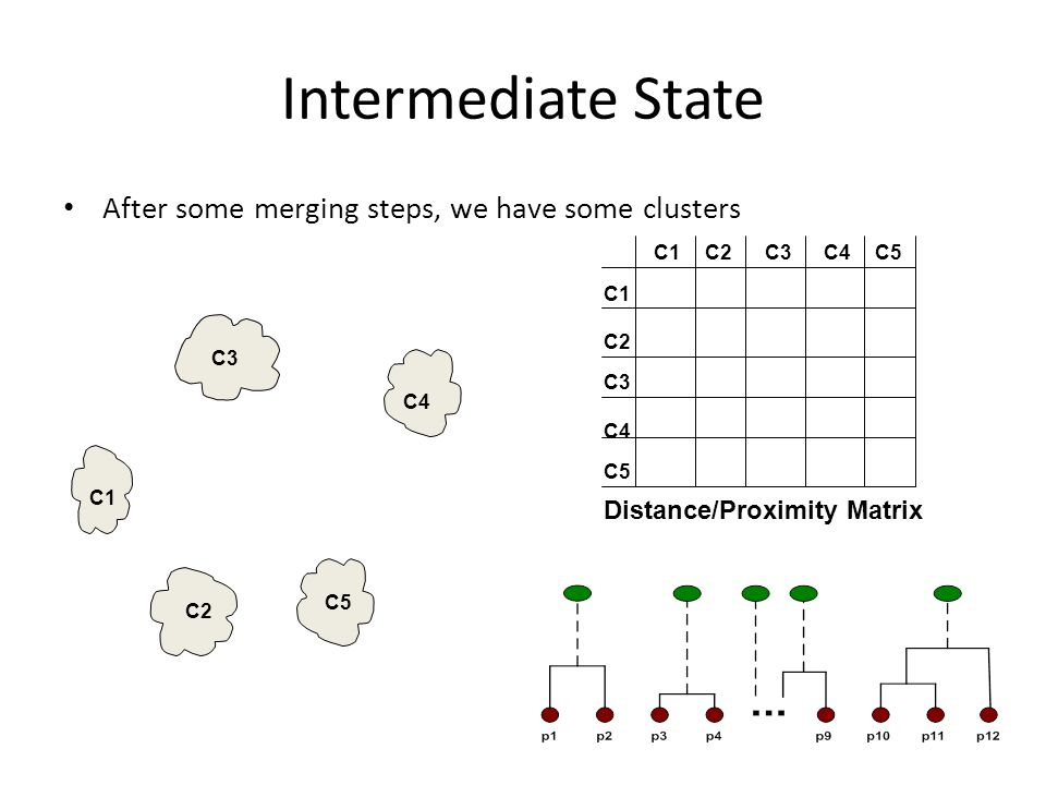Intermediate State After some merging steps, we have some clusters C1 C4 C2 C5 C3 C2C1 C3 C5 C4 C2 C3C4C5 Distance/Proximity Matrix
