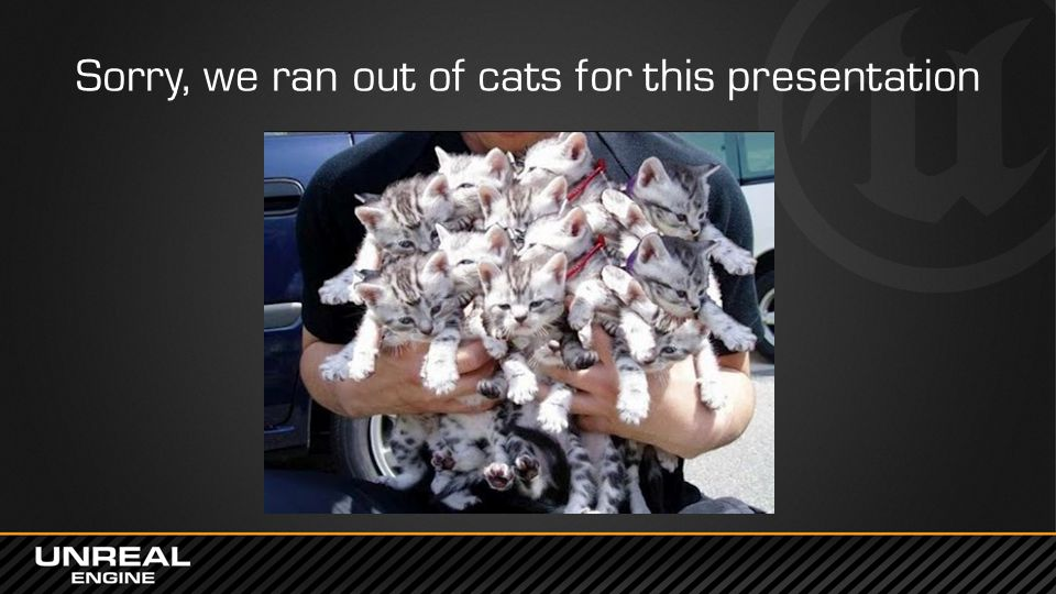 Sorry, we ran out of cats for this presentation