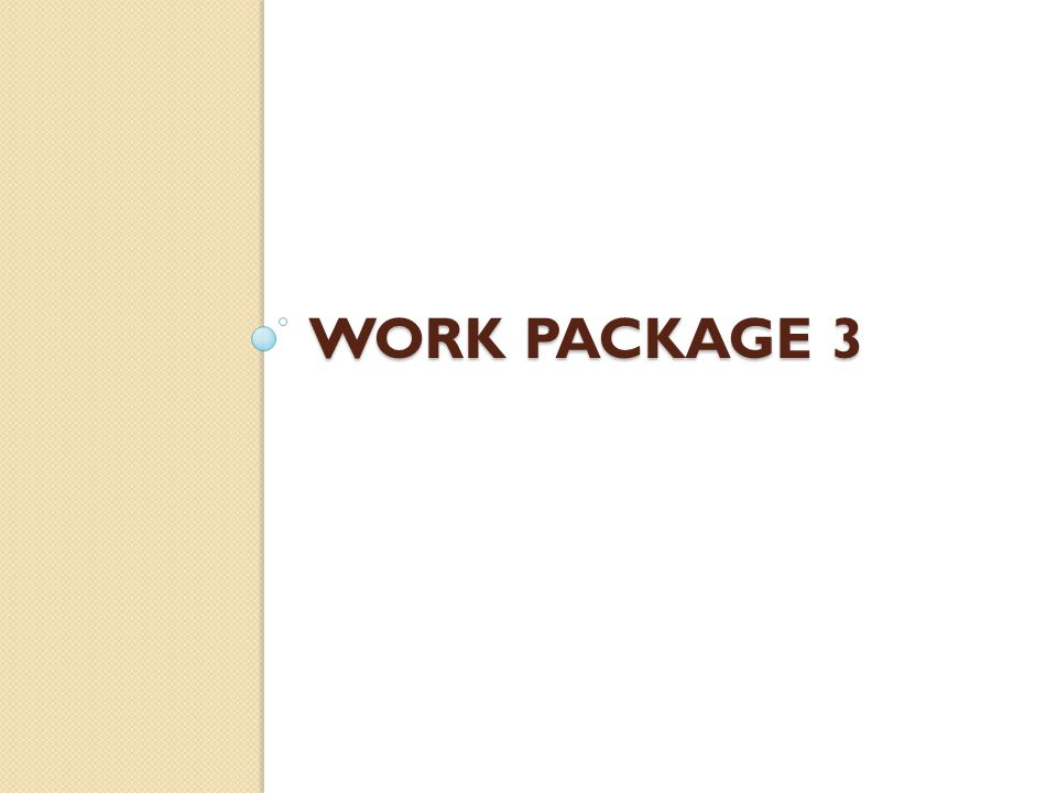WORK PACKAGE 3