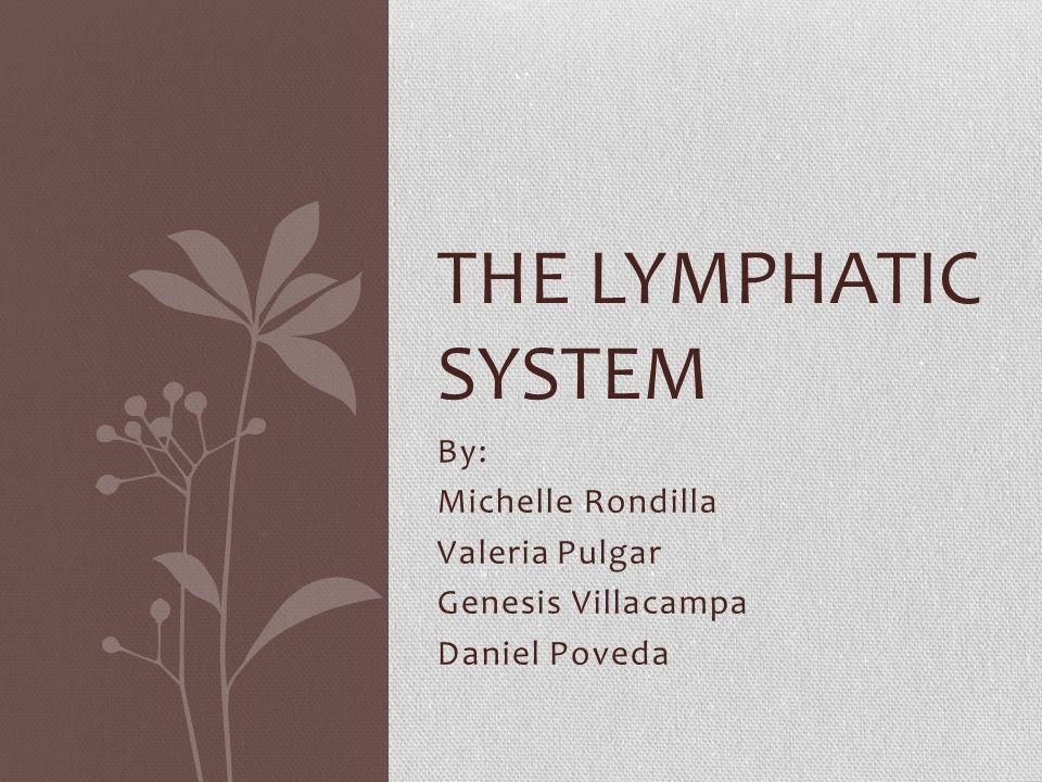 By: Michelle Rondilla Valeria Pulgar Genesis Villacampa Daniel Poveda THE LYMPHATIC SYSTEM