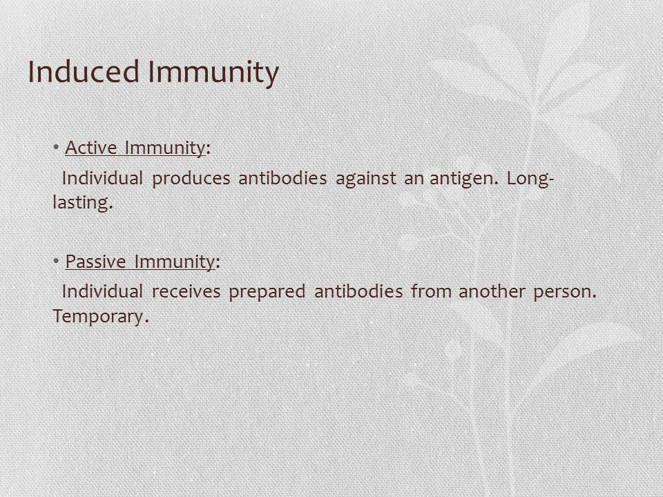Induced Immunity Active Immunity: Individual produces antibodies against an antigen. Long- lasting. Passive Immunity: Individual receives prepared ant