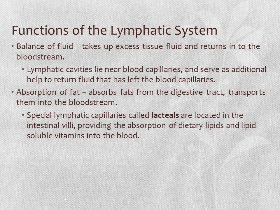 Functions of the Lymphatic System Balance of fluid – takes up excess tissue fluid and returns in to the bloodstream. Lymphatic cavities lie near blood