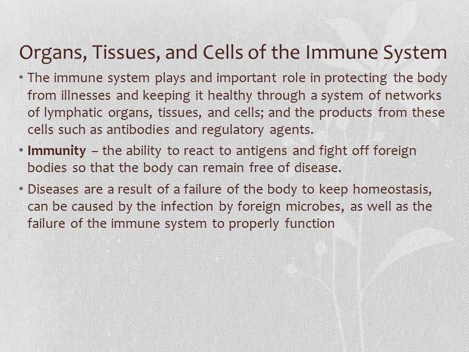 Organs, Tissues, and Cells of the Immune System The immune system plays and important role in protecting the body from illnesses and keeping it health