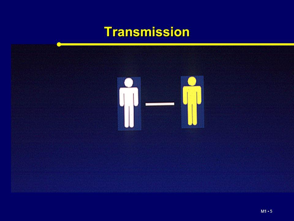 M1 5 Transmission