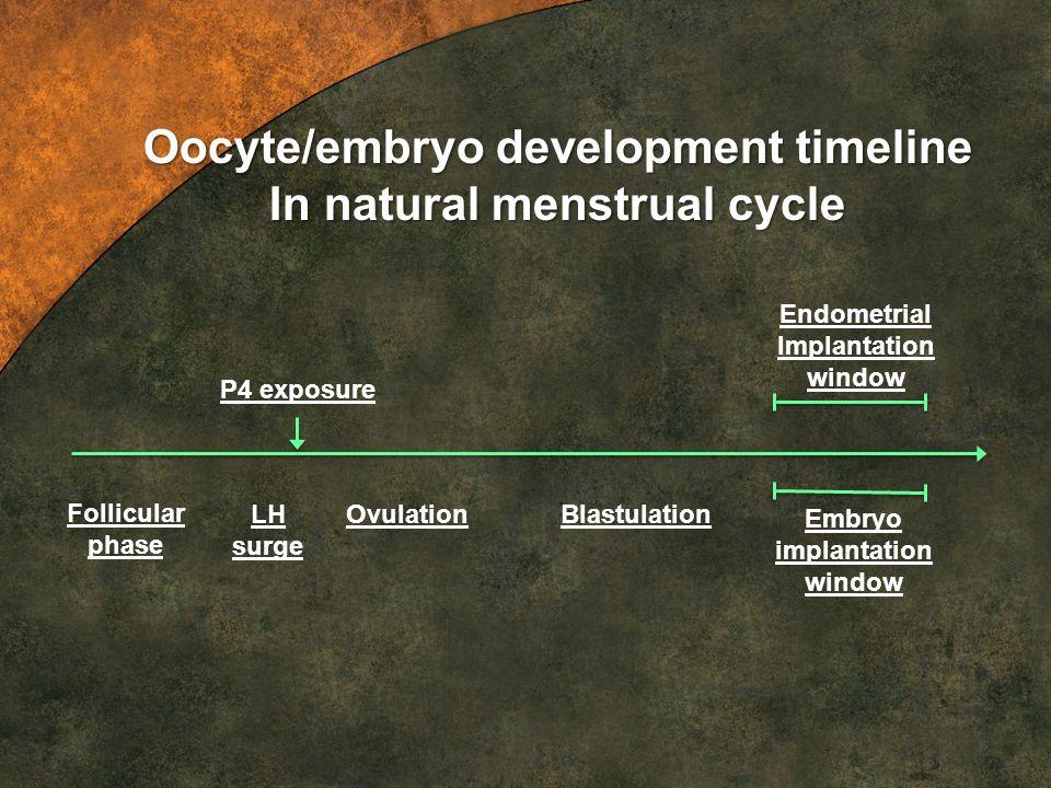 LH surge OvulationBlastulation Embryo implantation window Endometrial Implantation window Oocyte/embryo development timeline In natural menstrual cycl