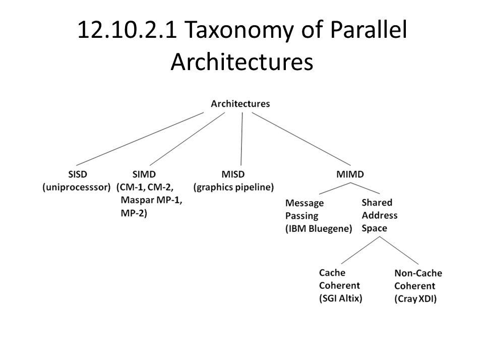 12.10.2.1 Taxonomy of Parallel Architectures