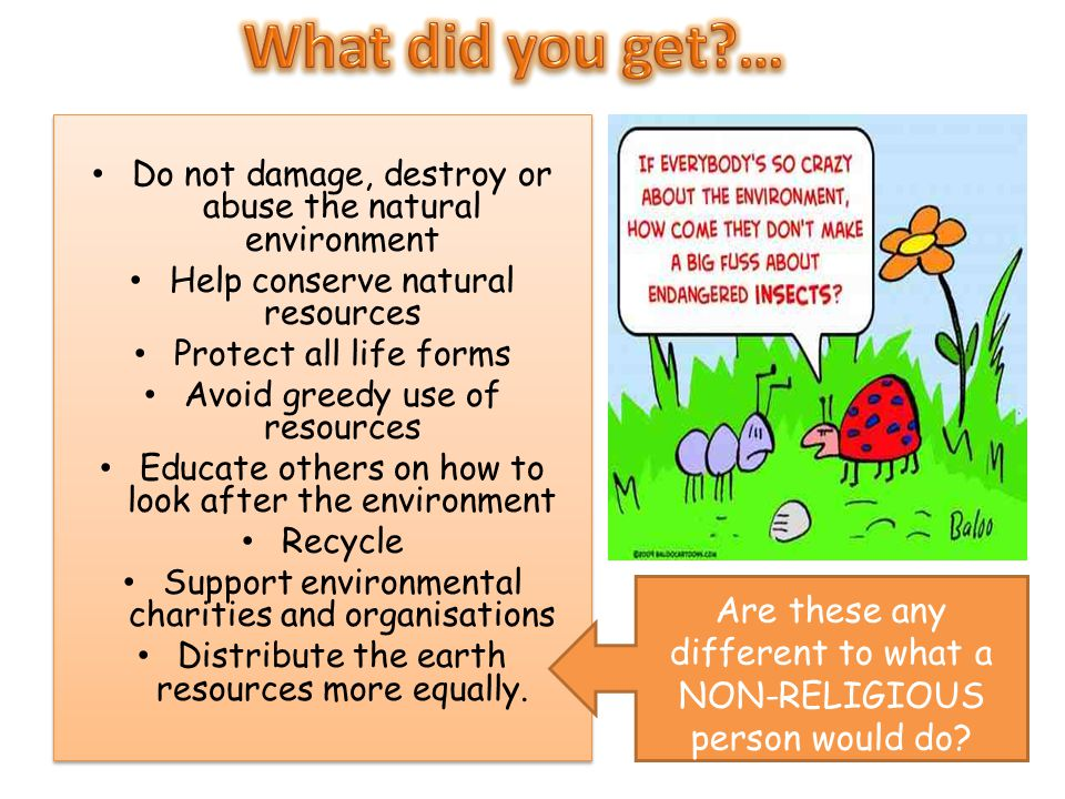 Do not damage, destroy or abuse the natural environment Help conserve natural resources Protect all life forms Avoid greedy use of resources Educate o