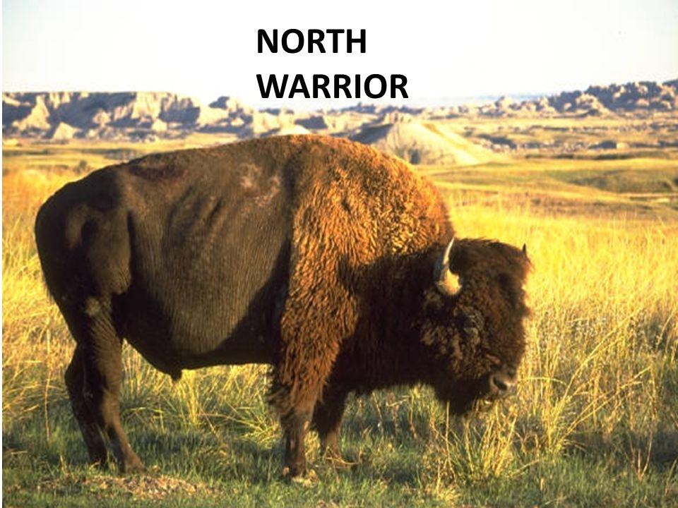 NORTH WARRIOR