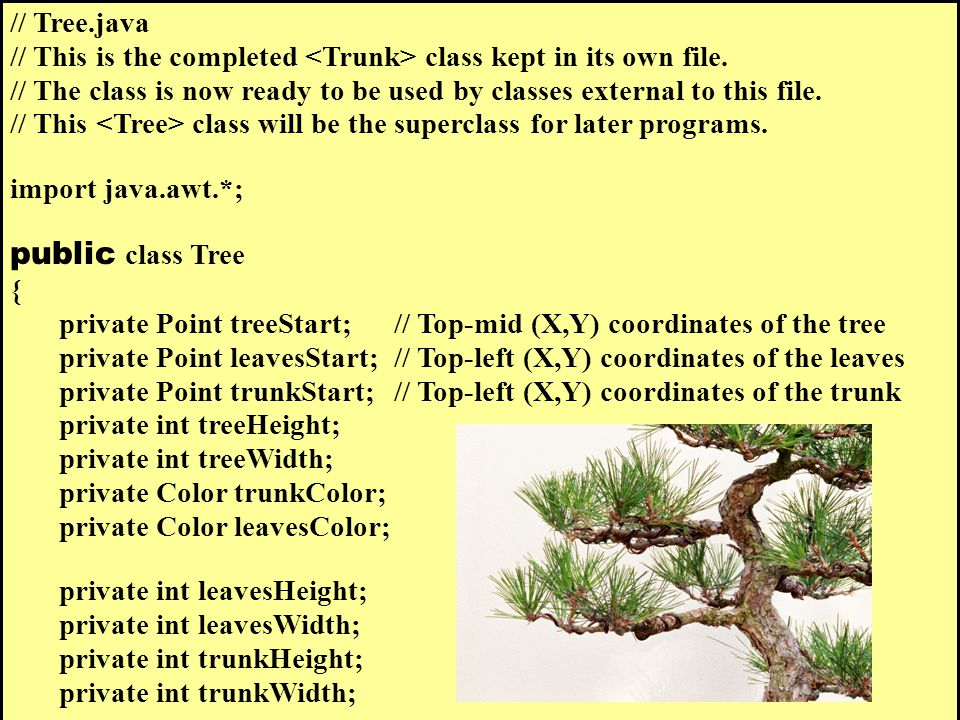 // Tree.java // This is the completed class kept in its own file.