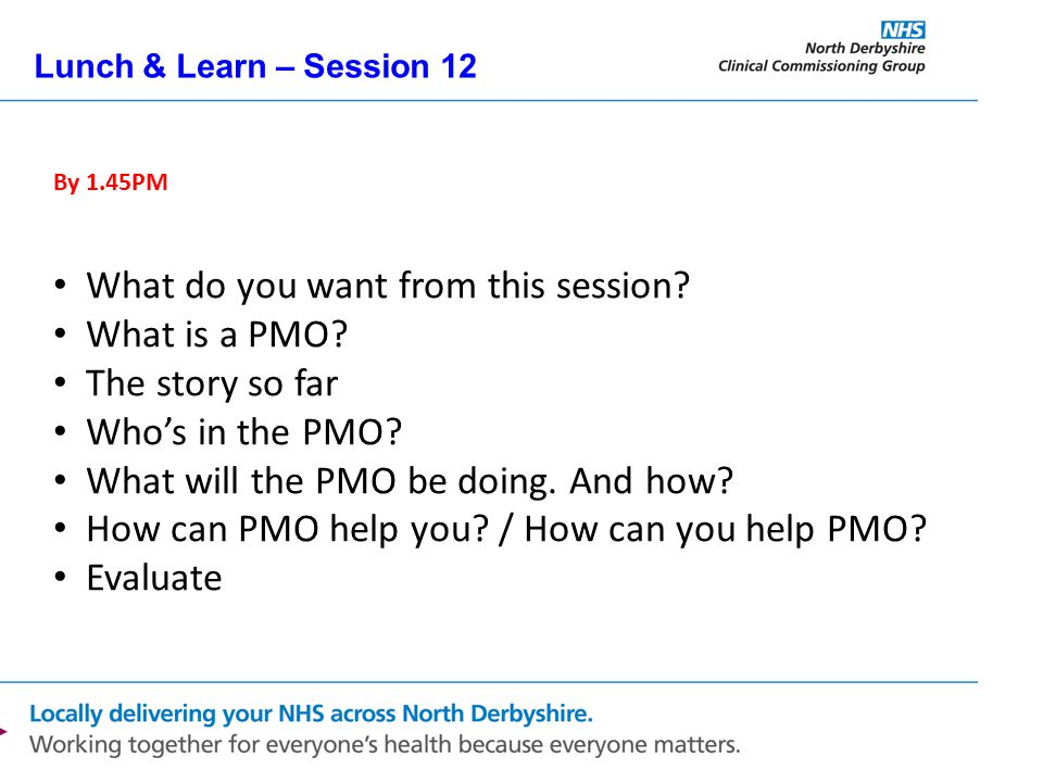 Lunch & Learn – Session 12 By 1.45PM What do you want from this session? What is a PMO? The story so far Who's in the PMO? What will the PMO be doing.