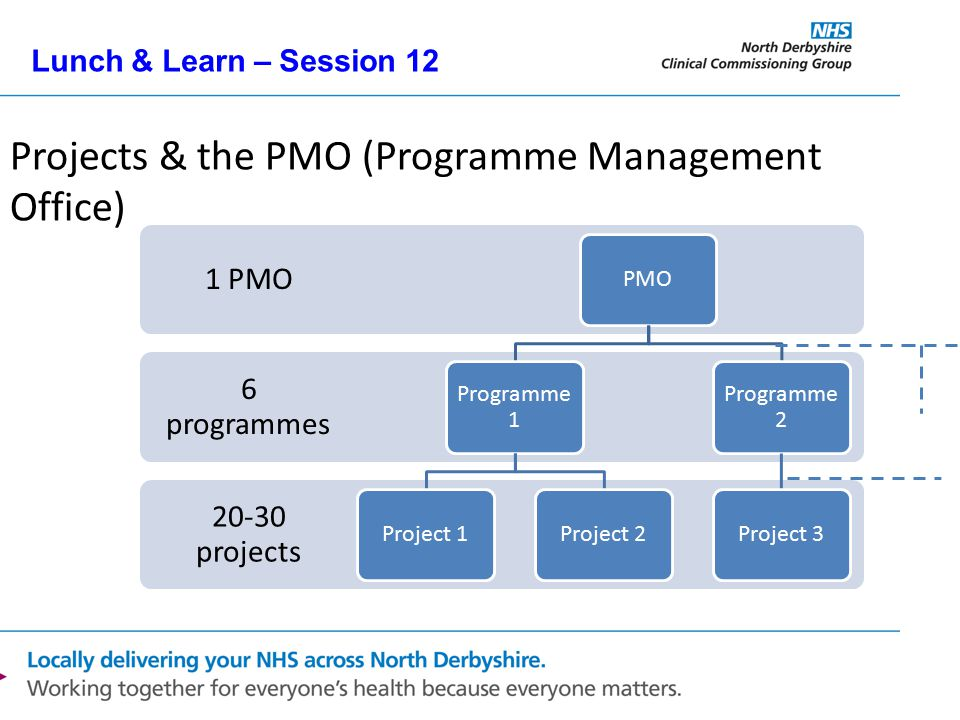 Lunch & Learn – Session 12 Projects & the PMO (Programme Management Office) 20-30 projects 6 programmes 1 PMO PMO Programme 1 Project 1Project 2 Progr