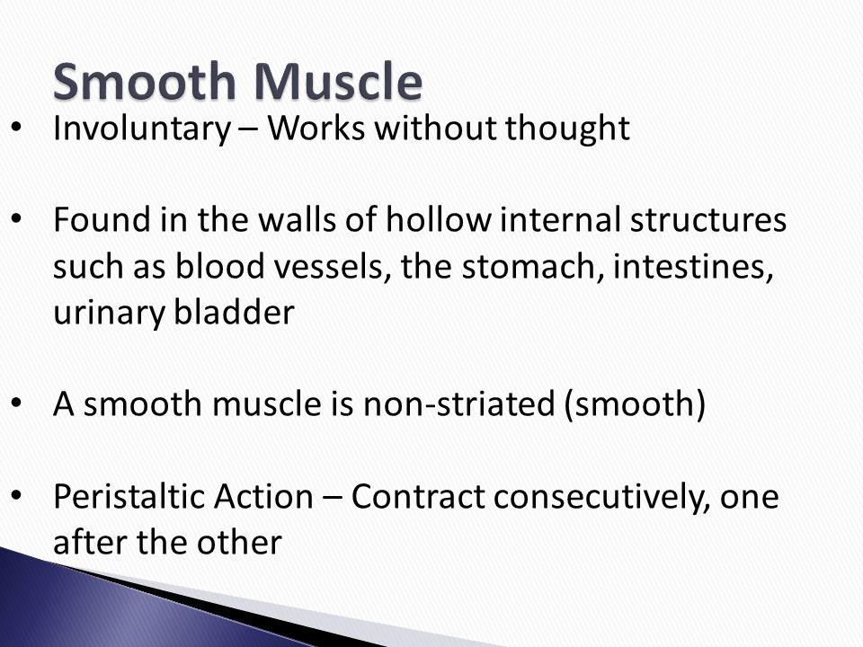 Involuntary – Works without thought Found in the walls of hollow internal structures such as blood vessels, the stomach, intestines, urinary bladder A