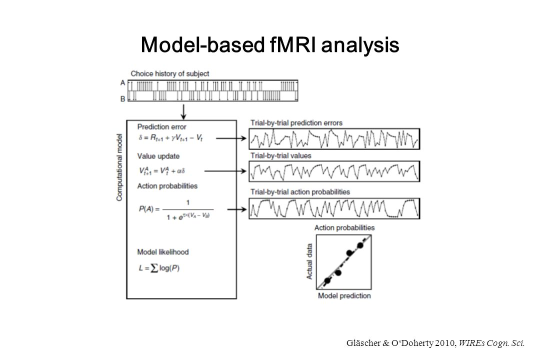 Model-based fMRI analysis Gläscher & O'Doherty 2010, WIREs Cogn. Sci.