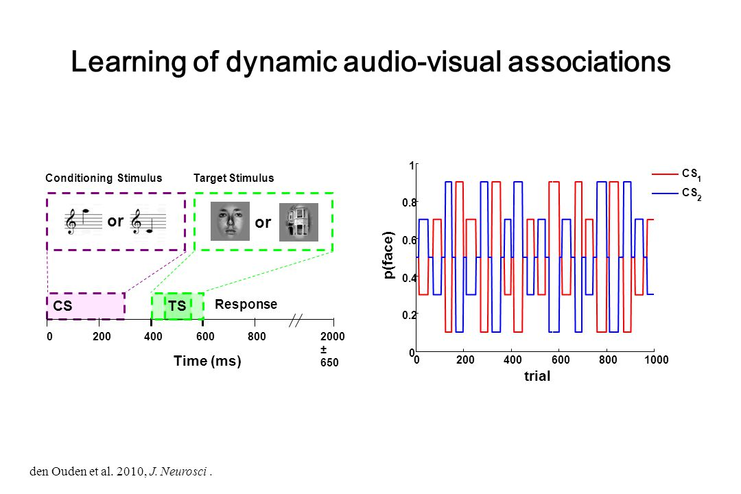 Learning of dynamic audio-visual associations CS Response Time (ms) 02004006008002000 ± 650 or Target StimulusConditioning Stimulus or TS 02004006008001000 0 0.2 0.4 0.6 0.8 1 p(face) trial CS 1 2 den Ouden et al.