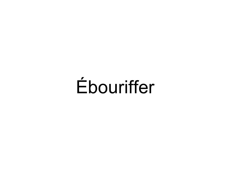 Ébouriffer