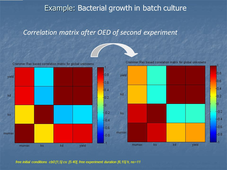 Example: Example: Bacterial growth in batch culture Correlation matrix after OED of second experiment free initial conditions cb0:[1,5] cs: [5 40], free experiment duration [6,15] h, ns=11