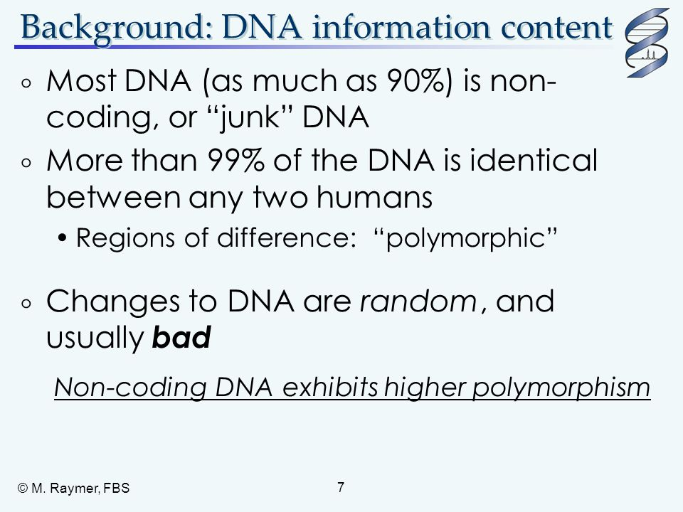 "© M. Raymer, FBS 7 Background: DNA information content  Most DNA (as much as 90%) is non- coding, or ""junk"" DNA  More than 99% of the DNA is identic"