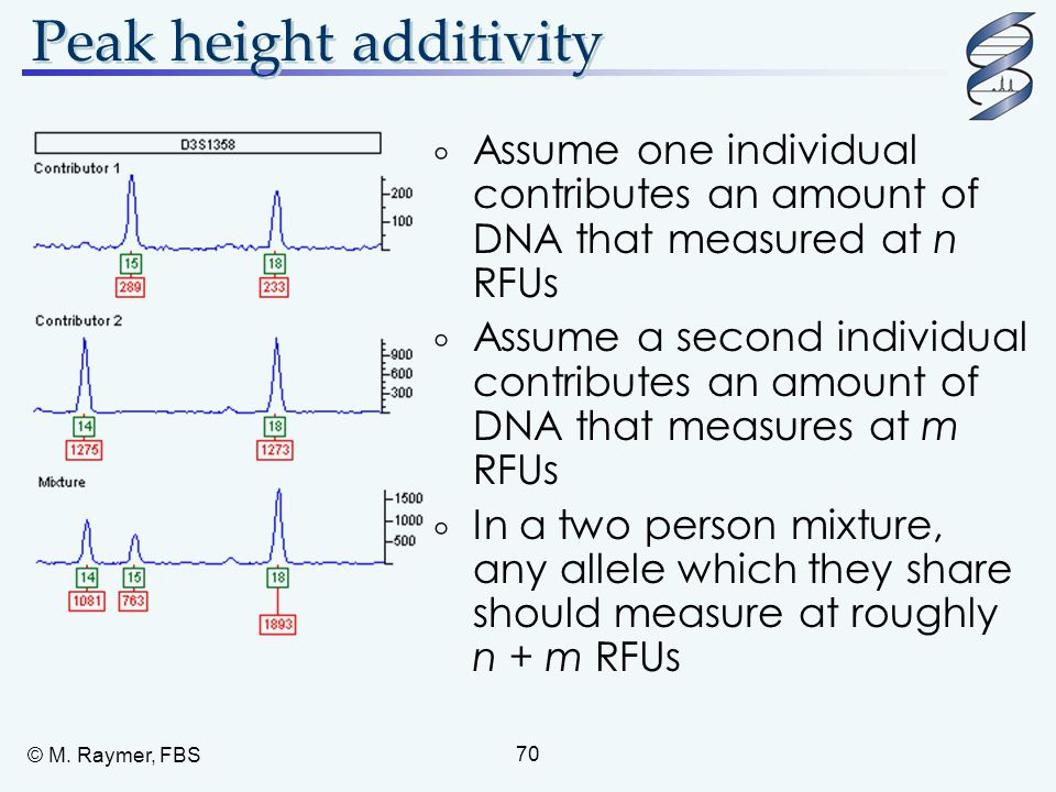© M. Raymer, FBS 70 Peak height additivity  Assume one individual contributes an amount of DNA that measured at n RFUs  Assume a second individual c