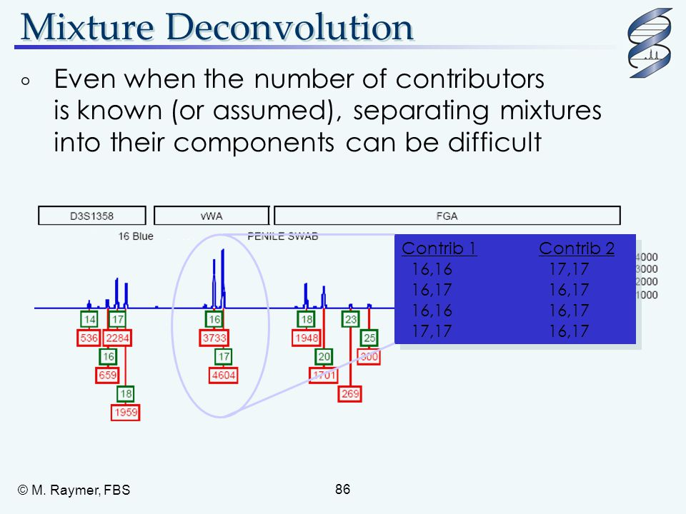 © M. Raymer, FBS 86 Mixture Deconvolution  Even when the number of contributors is known (or assumed), separating mixtures into their components can