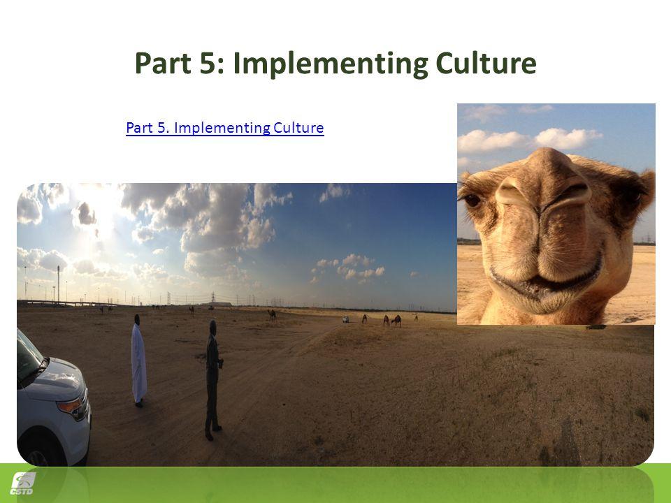 Part 5: Implementing Culture Part 5. Implementing Culture