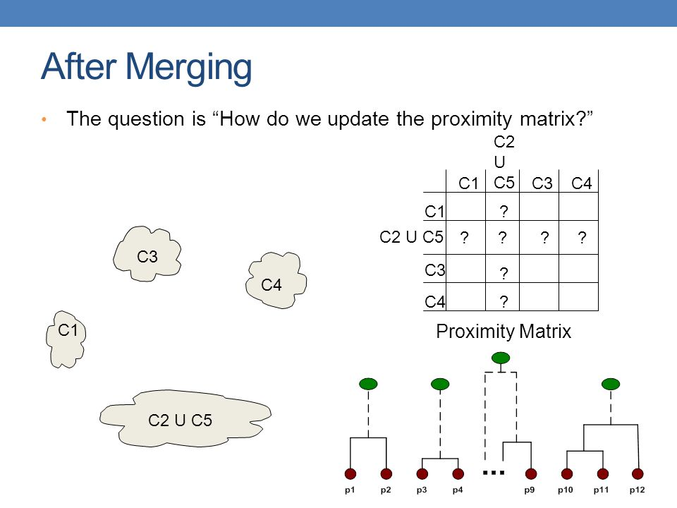 After Merging The question is How do we update the proximity matrix? C1 C4 C2 U C5 C3 .