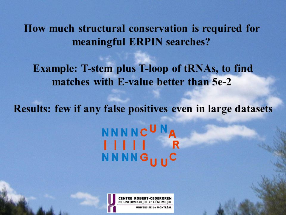 How much structural conservation is required for meaningful ERPIN searches? Example: T-stem plus T-loop of tRNAs, to find matches with E-value better