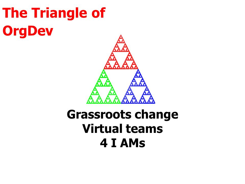 The Triangle of OrgDev Grassroots change Virtual teams 4 I AMs