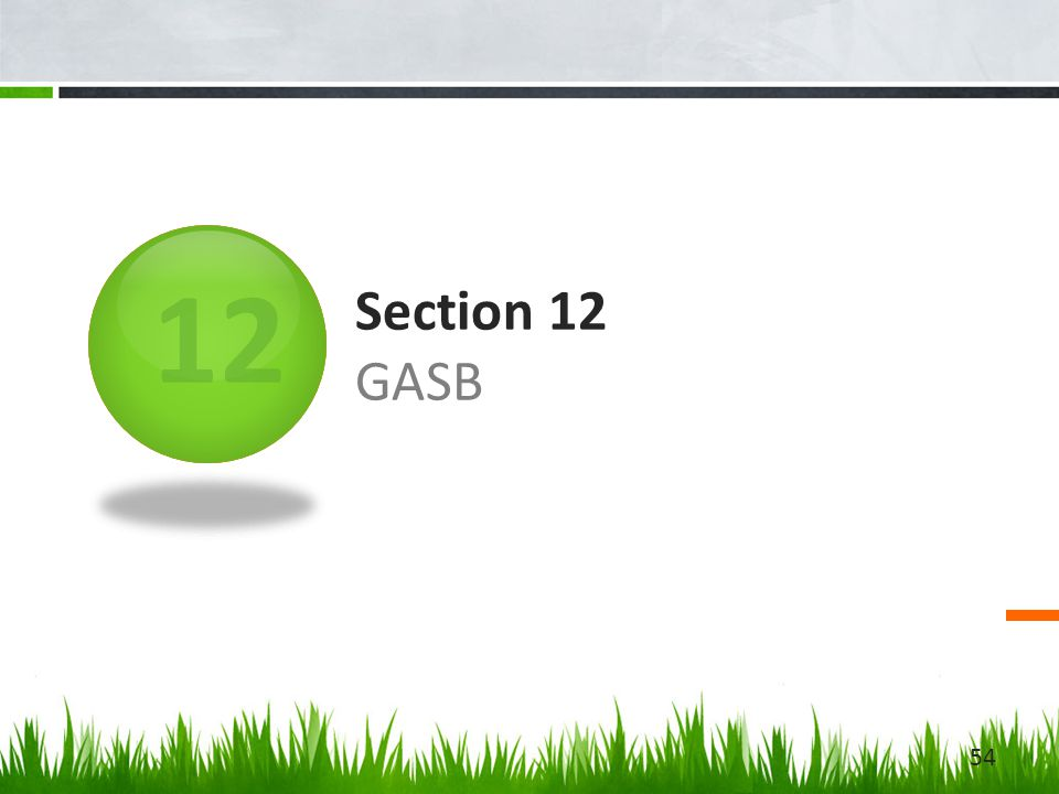 12 Section 12 GASB 54