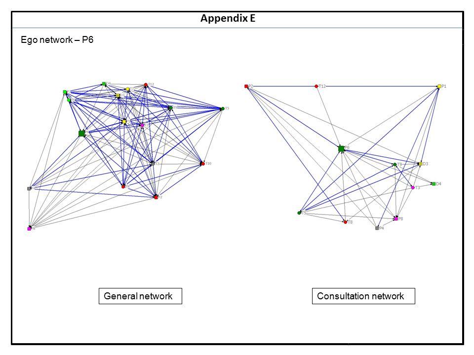 Notes 19 Appendix E Ego network – P6 General networkConsultation network