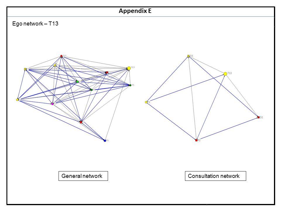 Notes 34 Appendix E Ego network – T13 General networkConsultation network