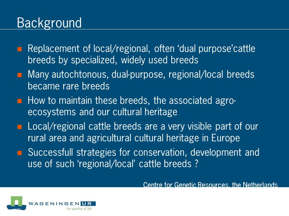 Centre for Genetic Resources, the Netherlands Background Replacement of local/regional, often 'dual purpose'cattle breeds by specialized, widely used breeds Many autochtonous, dual-purpose, regional/local breeds became rare breeds How to maintain these breeds, the associated agro- ecosystems and our cultural heritage Local/regional cattle breeds are a very visible part of our rural area and agricultural cultural heritage in Europe Successfull strategies for conservation, development and use of such 'regional/local' cattle breeds