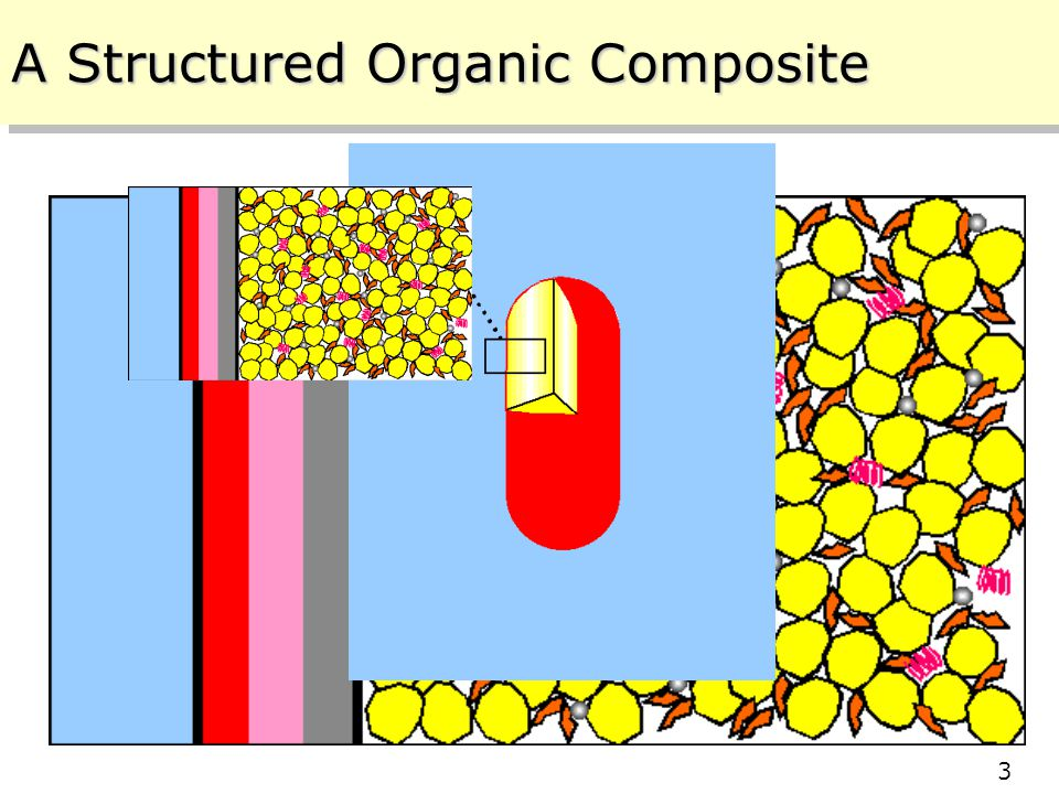 Center for Structured Organic Composites (C-SOC) Rutgers – NJIT – Purdue – UPRM 10/11/2005 3 3 A Structured Organic Composite