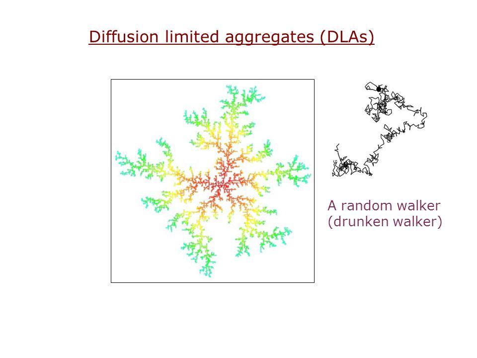 Diffusion limited aggregates (DLAs) A random walker (drunken walker)
