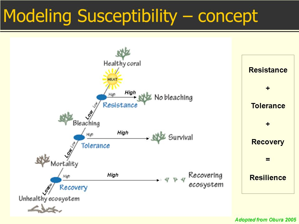 Modeling Susceptibility – concept High Low Resistance + Tolerance + Recovery = Resilience Adopted from Obura 2005