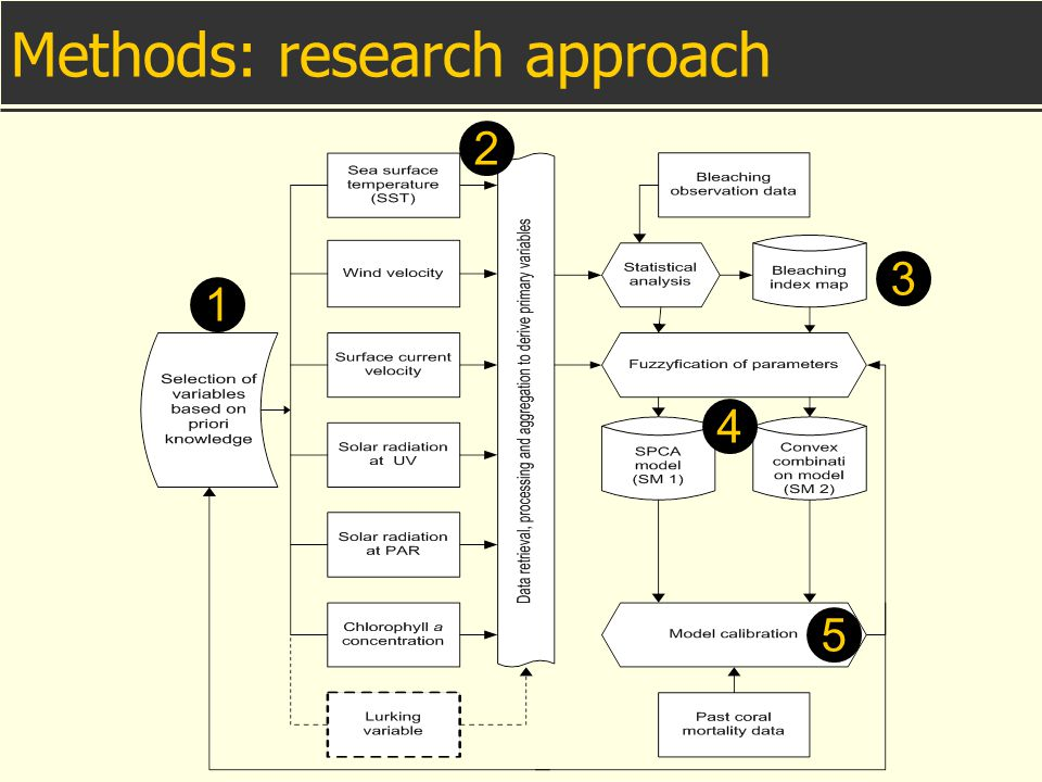 Methods: research approach 1 2 3 4 5