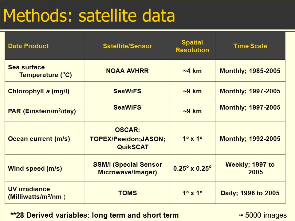 Methods: satellite data Data ProductSatellite/Sensor Spatial Resolution Time Scale Sea surface Temperature ( o C) NOAA AVHRR~4 kmMonthly; 1985-2005 Ch