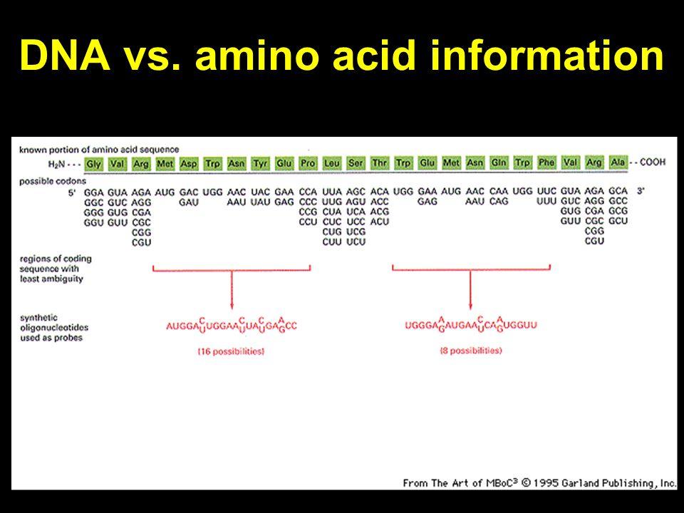DNA vs. amino acid information