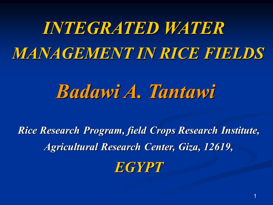 1 INTEGRATED WATER MANAGEMENT IN RICE FIELDS MANAGEMENT IN RICE FIELDS Badawi A. Tantawi Rice Research Program, field Crops Research Institute, Agricu