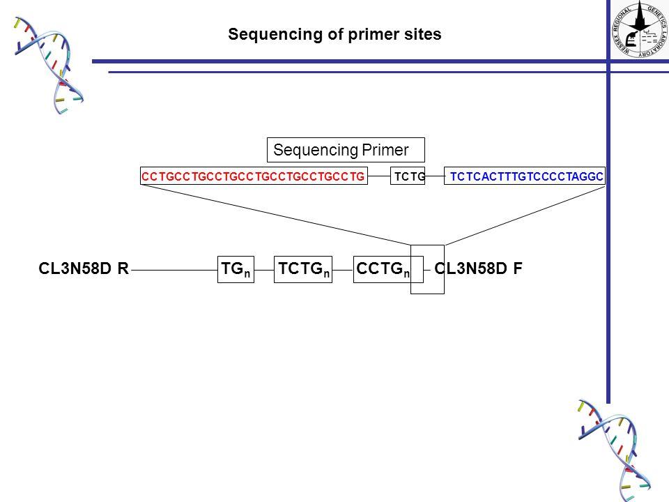 TG n TCTG n CCTG n CL3N58D FCL3N58D R CCTGCCTGCCTGCCTGCCTGCCTGCCTG TCTG TCTCACTTTGTCCCCTAGGC Sequencing of primer sites Sequencing Primer