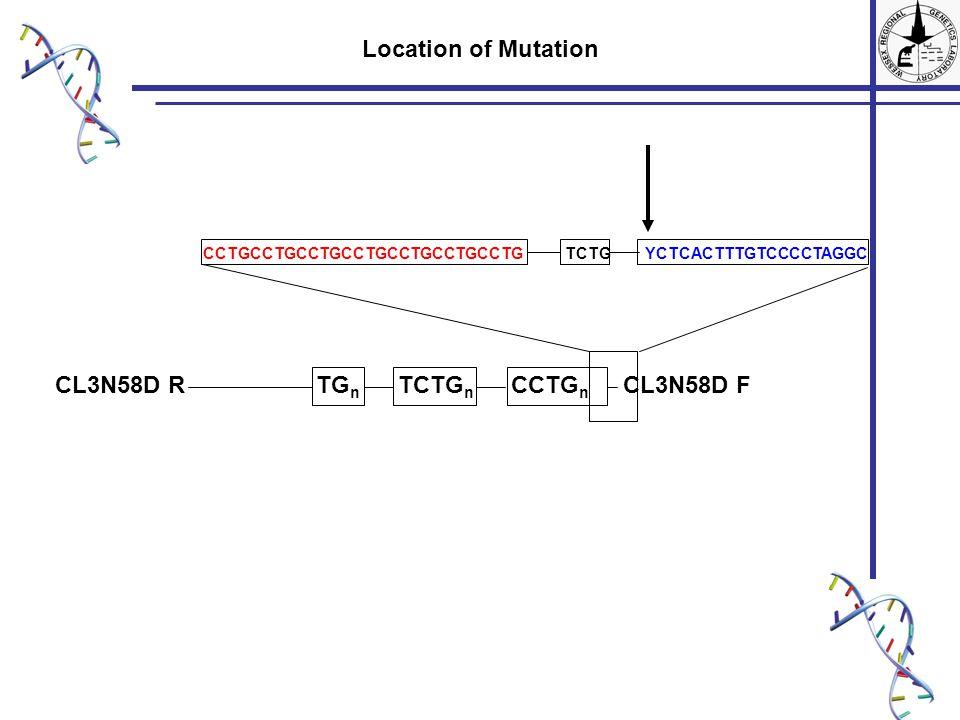 TG n TCTG n CCTG n CL3N58D FCL3N58D R Location of Mutation CCTGCCTGCCTGCCTGCCTGCCTGCCTG TCTG YCTCACTTTGTCCCCTAGGC