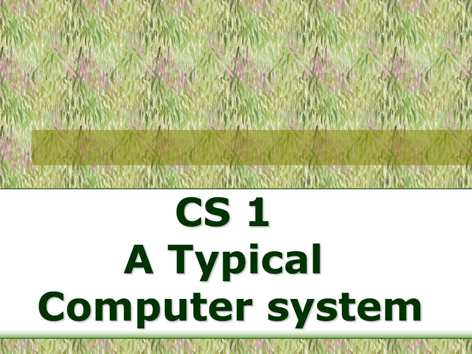CS 1 A Typical Computer system