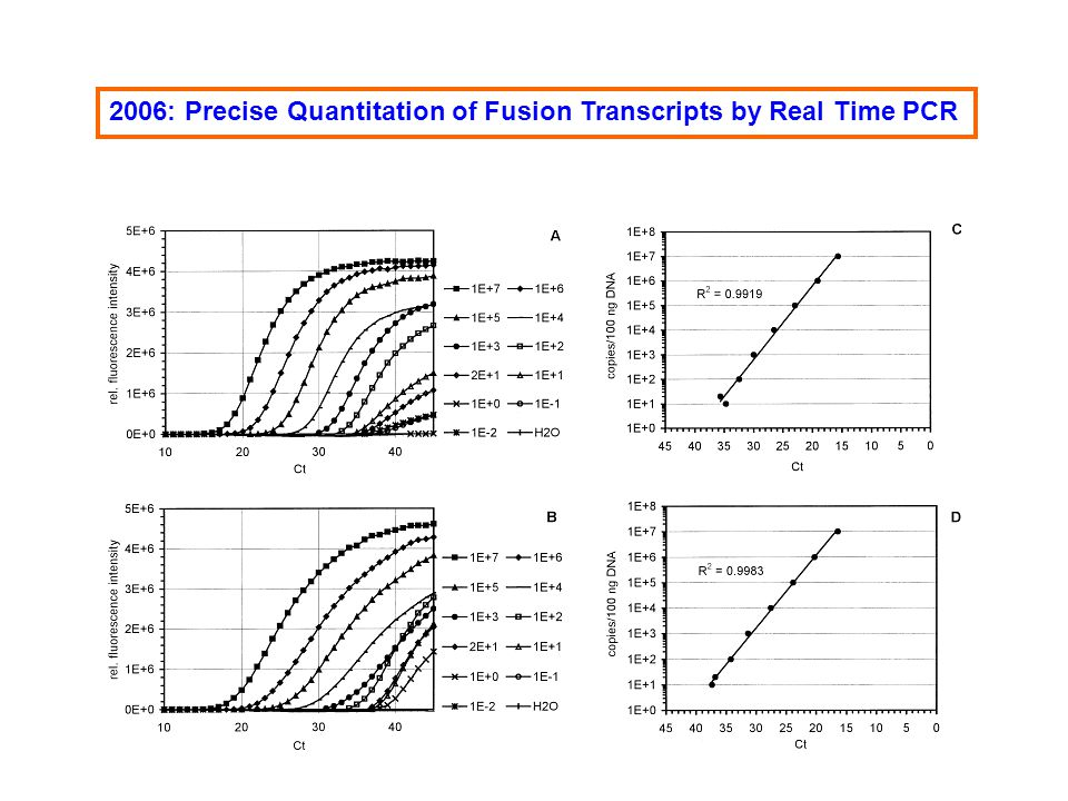 2006: Precise Quantitation of Fusion Transcripts by Real Time PCR