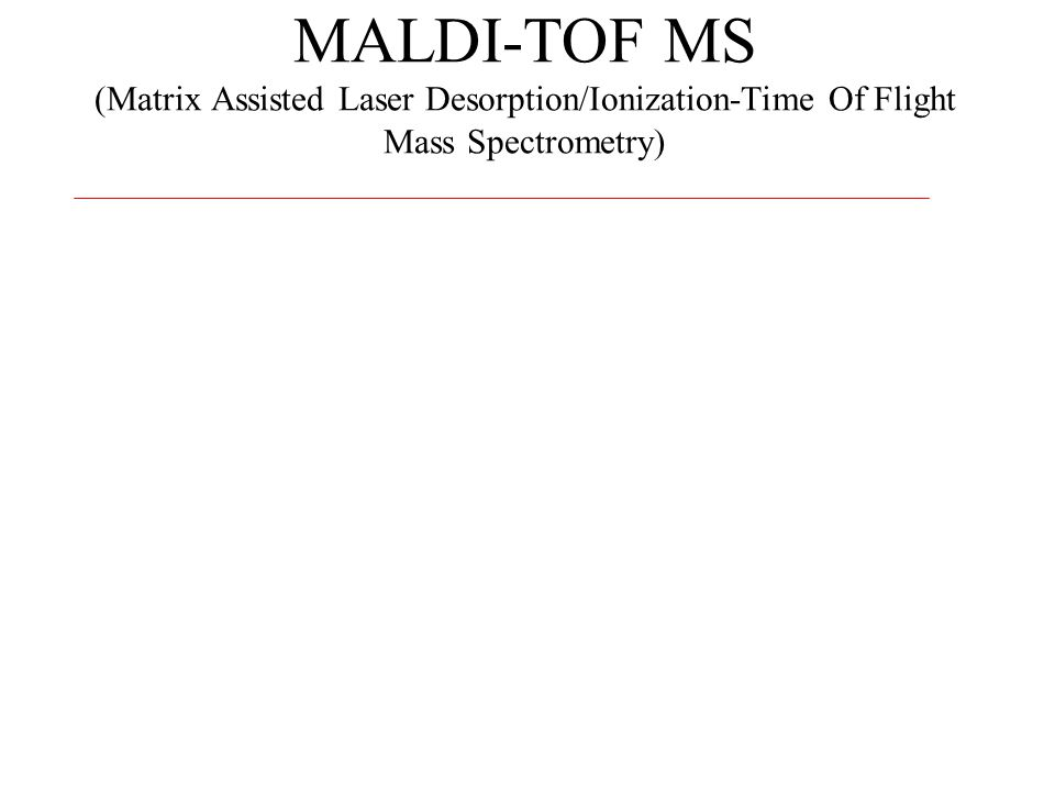 MALDI-TOF MS (Matrix Assisted Laser Desorption/Ionization-Time Of Flight Mass Spectrometry)