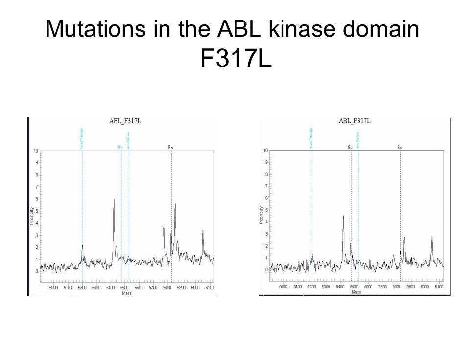 Mutations in the ABL kinase domain F317L