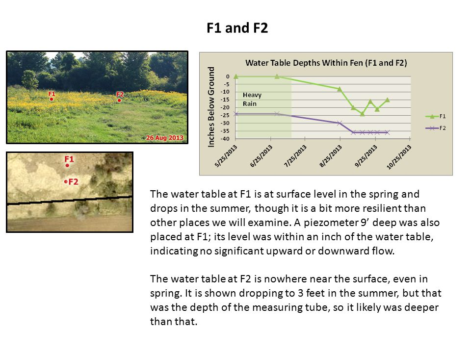 F1 and F2 The water table at F1 is at surface level in the spring and drops in the summer, though it is a bit more resilient than other places we will examine.