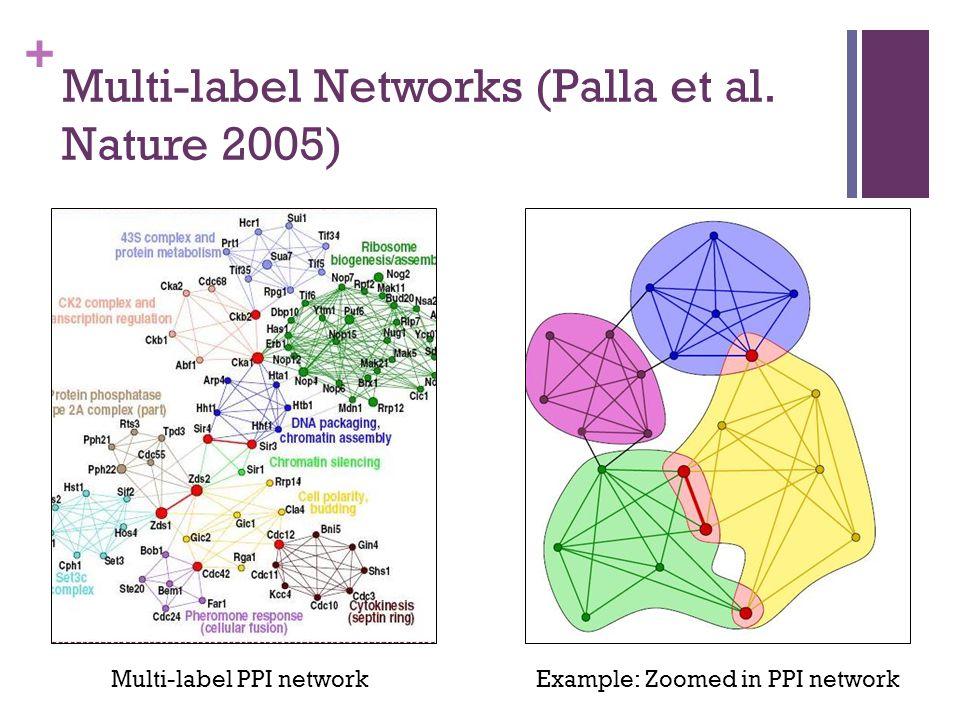 + Multi-label Networks (Palla et al.